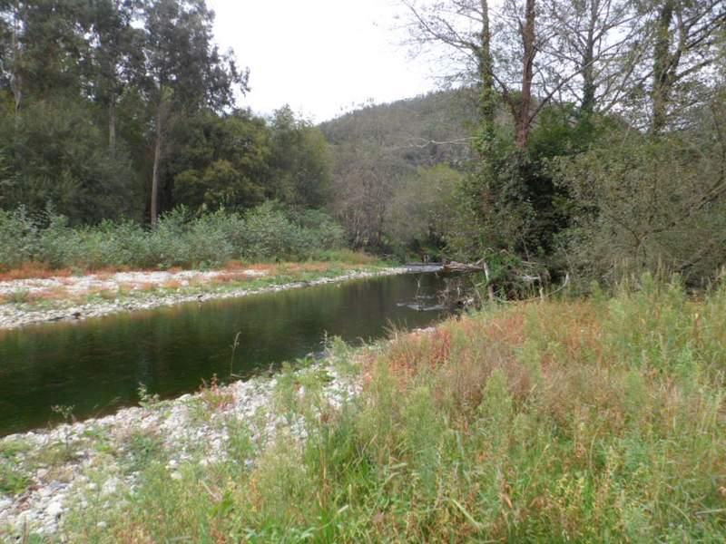 Estado inicial del río Esva