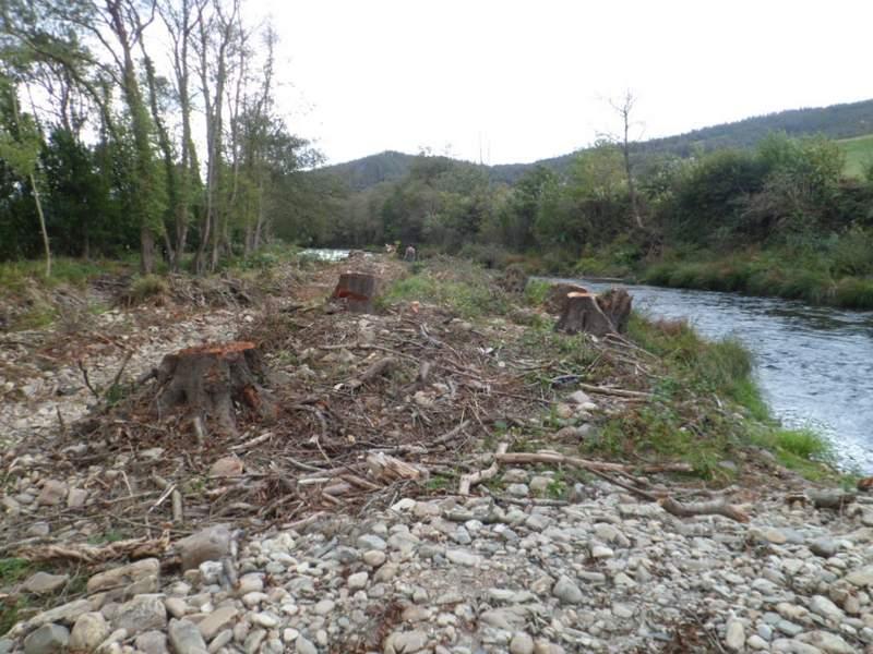 Estado del rio antes del comienzo de las obras