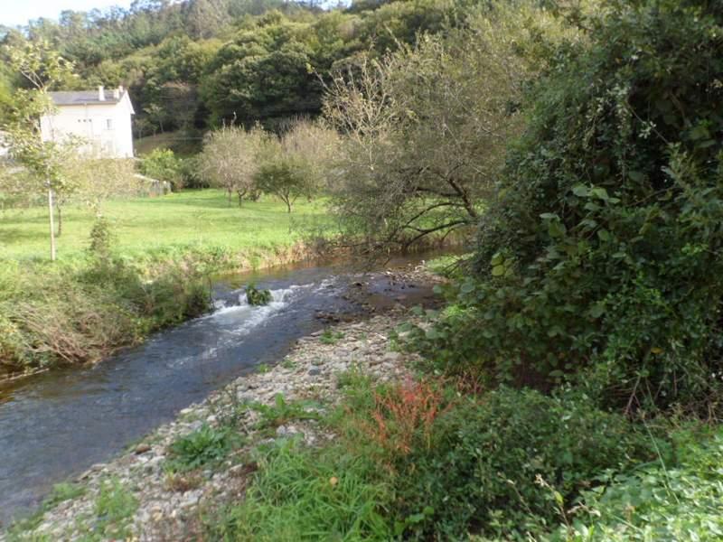 Estado inicial del río Llorín
