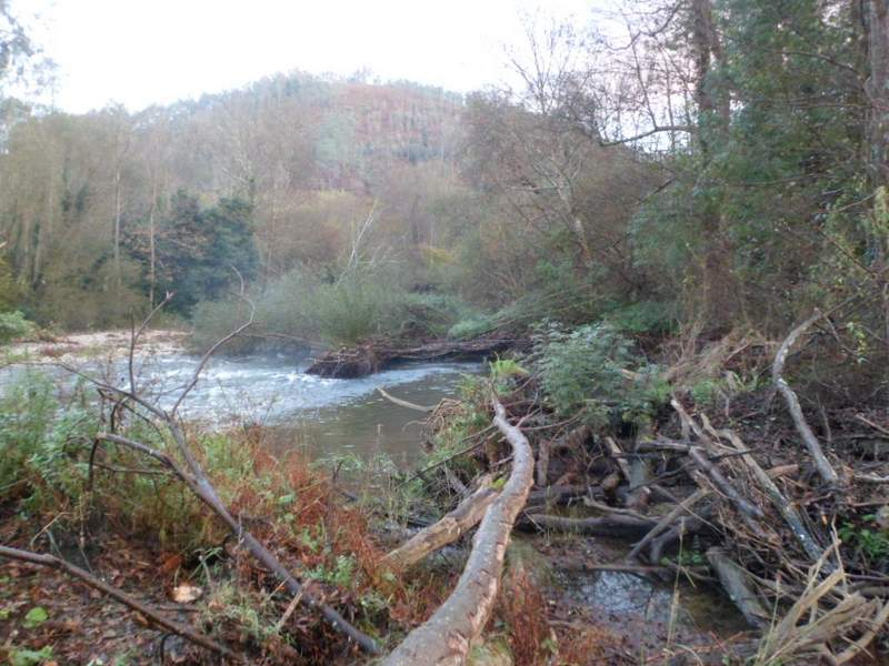 Estado incial del río Esva
